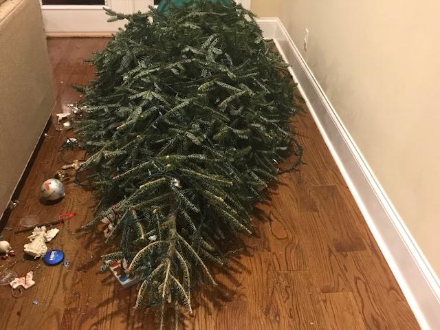 the fallen christmas tree